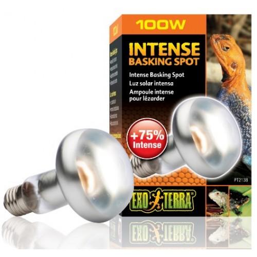 Лампа для террариума Exo Terra Reptile дневная S25 100W (PT2138)