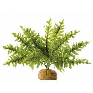 Растение для террариума на подставке Exo Terra Boston Fern small (PT2990)