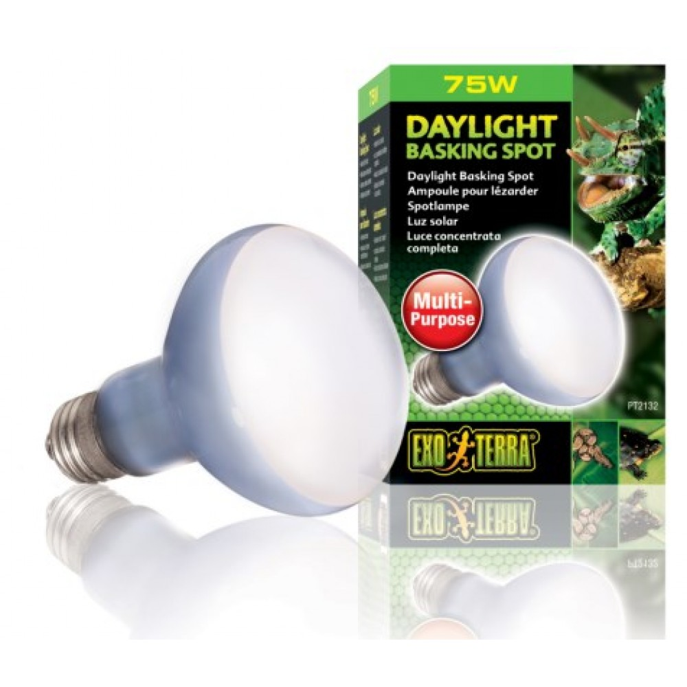 Лампа для тераріуму Exo Terra неонова дзеркальна R20 75W (PT2132)