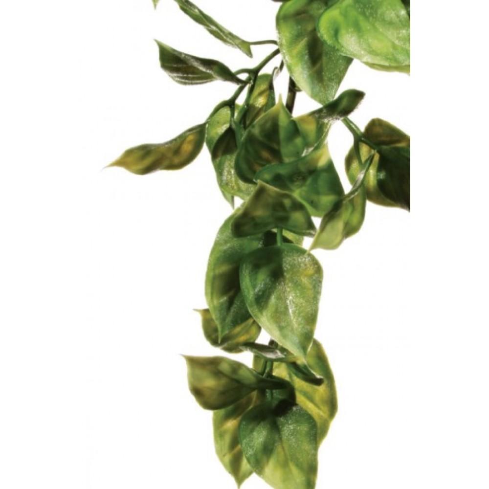Растение для террариума Exo Terra AMAPALLO малое (РТ3001)