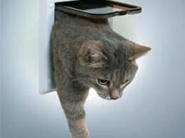 Двері для котів