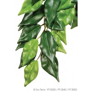 Растентие шелковое FICUS средний PT3040