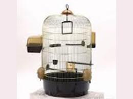 Клітини і будиночки для птахів