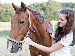 Догляд за конем