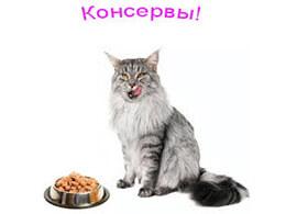 Консерви для котів