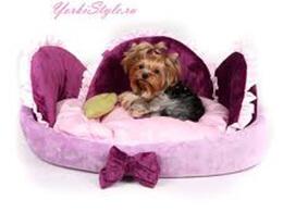 Мягкие места и лежанки для собак