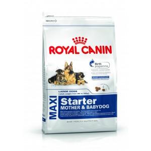 Royal Canin MAXI STARTER MOTHER & BABYDOG, 4 kg