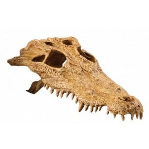 Череп крокодила Exo Terra (PT2856)