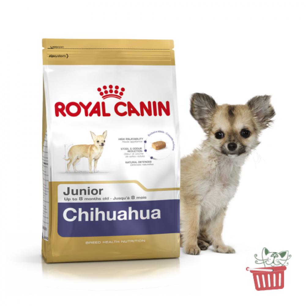 Royal Canin CHIHUAHUA Junior, 500g