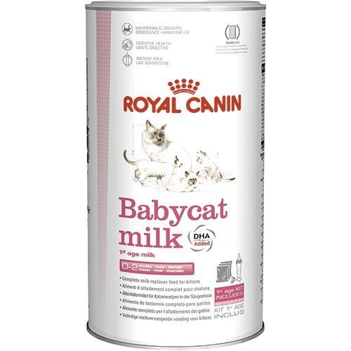 ROYAL CANIN BABYCAT MILK 300 гр
