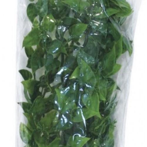 Растение для террариума Zoo Med Mexican Phyllo small 36 см (ZM-BU-10)