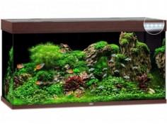 Аквариум Juwel RIO прямоугольный 350 LED 350л коричневый (07750)